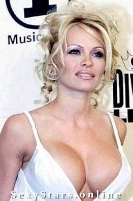 Памела Андерсон голая. Фото - 11